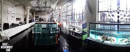 4D打印团队