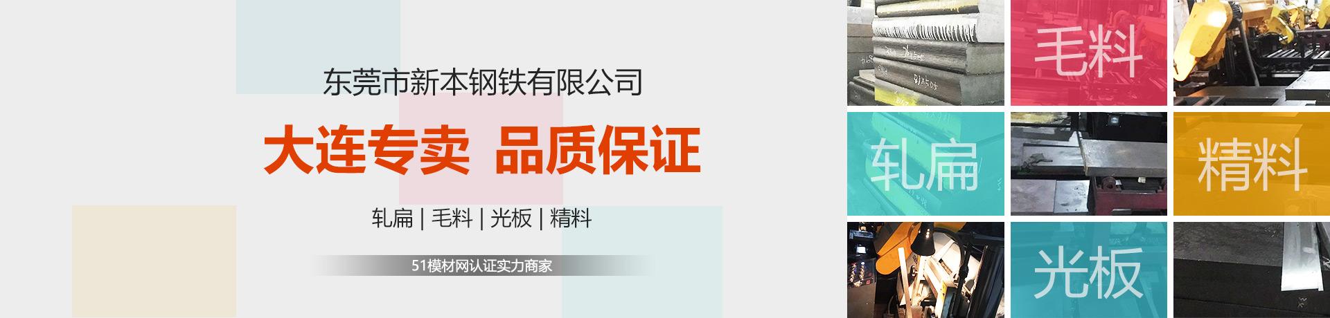 东莞市新本钢铁有限公司