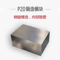 p20標準內模件